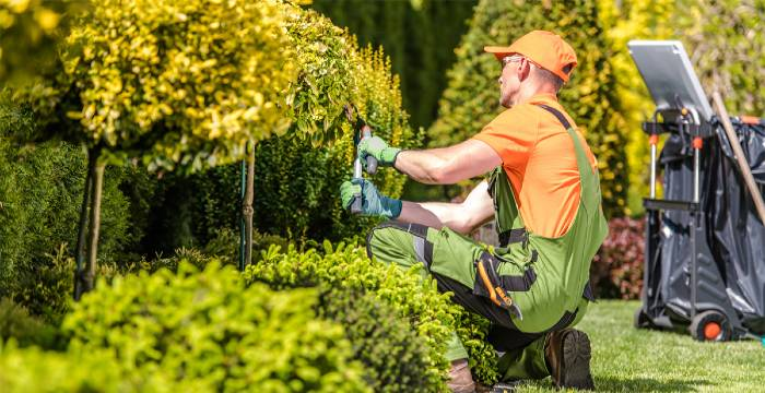 Choose the Right Landscaping Company